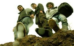 3 брать на горе Стоковые Изображения