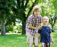 2 брать на парке Стоковое Фото