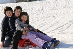 3 брать на скелетоне в снеге в зиме Стоковые Изображения RF
