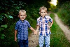 2 брать обнимая один другого внешний Стоковое фото RF