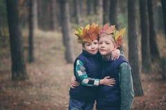 2 брать прижимаясь в лесе на день осени Маленькие ребеята hu Стоковое Изображение RF