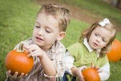 Брат и сестра малыша на заплате тыквы Стоковые Изображения RF