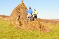 Брат и сестра скача на стог сена стоковое фото rf