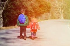 Брат и сестра с рюкзаками идя на дорогу Стоковое Изображение