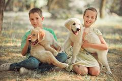 Брат сестры подростка сцены щенка Retriever симпатичный наслаждается представить каникулы временени с собакой белым labrador цвет стоковые фотографии rf