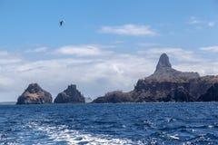 2 Брат Фернандо de Noronha Остров Стоковое Изображение