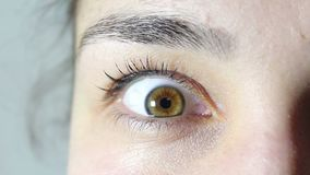 Браун-зеленый глаз молодой красивой девушки Девушка смотрит в камеру и моргает ее глазам видеоматериал