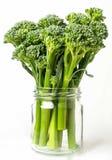 Брокколи младенца на белой предпосылке Vegetable концепция Стоковая Фотография