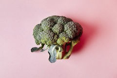 Брокколи изолированный на розовой предпосылке Современный стиль овощей, элементов дизайна битника, сверху Стоковые Изображения RF