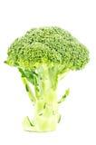 брокколи свежий Стоковое Изображение RF
