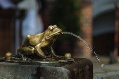 Бронза позолотила лягушку Стоковая Фотография RF