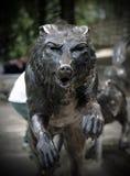 Бронзовая статуя головы волка Стоковое Фото
