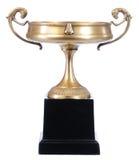 бронзовая чашка Стоковая Фотография RF