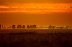 бронзовый рассвет цвета Стоковая Фотография RF