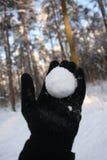 бросать snowball Стоковые Фотографии RF