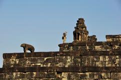 Бродяжничанный в Pre Rup, Angkor Стоковые Изображения RF