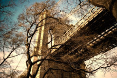 Бруклинский мост через ветви дерева зимы Стоковая Фотография RF