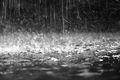 брызгает воду Стоковое Изображение RF