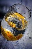Брызгает и часть плодоовощ в стекле воды Стоковое Фото