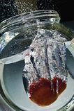брызгать воду томата Стоковое Фото