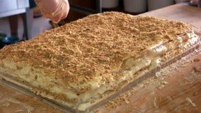 Брызгать торт с мякишами видеоматериал