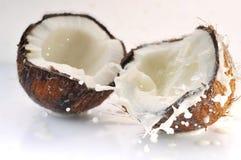 брызгать треснутый кокосом Стоковые Фото