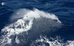 брызг моря Стоковая Фотография RF