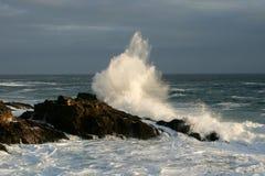 Брызг моря Стоковые Фотографии RF