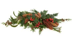Брызг флоры зимы декоративный Стоковое Изображение