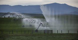Брызг Irrigator Стоковое Изображение