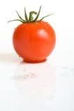 брызнутый томат Стоковые Изображения RF