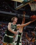 Брэд Lohaus, Celtics Бостона Стоковые Изображения