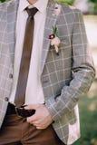 Брюки и серый цвет коричневого цвета groom Handsone checkered стоковое изображение rf
