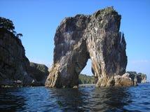 брюки моря Стоковое Изображение
