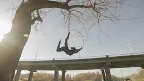 Брюнет гимнастики воздуха выполняет фокусы акробатики на воздушном обруче видеоматериал