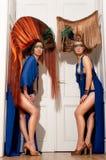 2 брюнет с высокорослыми художническими волосами Стоковая Фотография RF