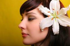 брюнет цветет белизна лилии Стоковая Фотография RF