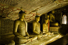 Будда выдалбливает висок sri lanka dambulla золотистый Стоковое фото RF