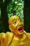 Будда детализирует золотистое Стоковая Фотография RF