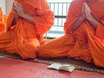 Буддийский монах моля Стоковое фото RF
