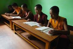 будизм Индия стоковые фотографии rf