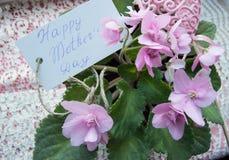 Будьте матерью карточки дня ` s с литерностью и цветками фиолета, красивым фоном для приветствий Стоковое фото RF