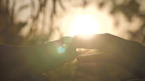 Будьте матерью руки ` s taching тщательно пальцы ребенка на заходе солнца, конце-вверх Концепция материнства видеоматериал