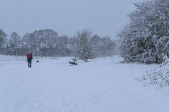 Будьте отцом носить его маленькую дочь в Forest Park во время сильного снегопада стоковые изображения