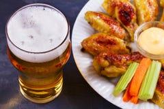Буйвол пива и крылов цыпленка aleppo Концепция пива и еды стоковые изображения rf