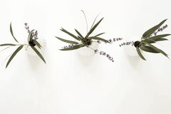 3 букета ветвей лаванды и евкалипта в белых вазах Стоковое фото RF