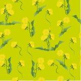 Букеты картины одуванчиков Стоковое Фото