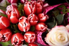 Букеты красного конца-вверх тюльпанов стоковые фотографии rf