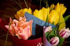 Букеты пестротканого конца-вверх тюльпанов стоковые изображения