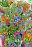Букеты тюльпана для продажи Стоковые Фото